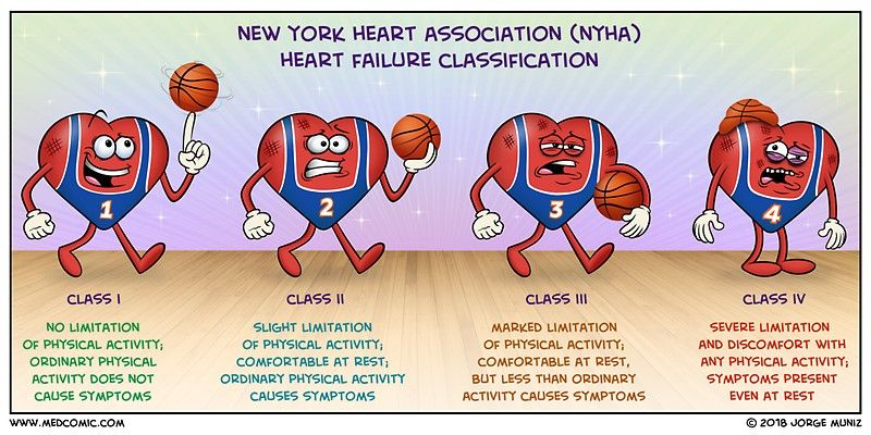 Google search heart failure heart failure