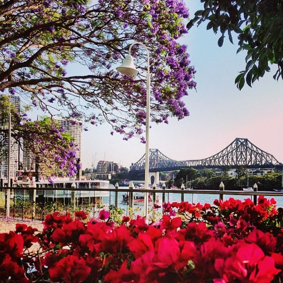 Gold Coast Brisbane Se Qld Nsw: Brisbane Is Still Central To The Life Of The Family