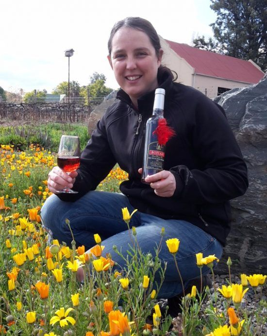 Boplaas Wins Best Red Muscadel For The Calitzdorp Area At The
