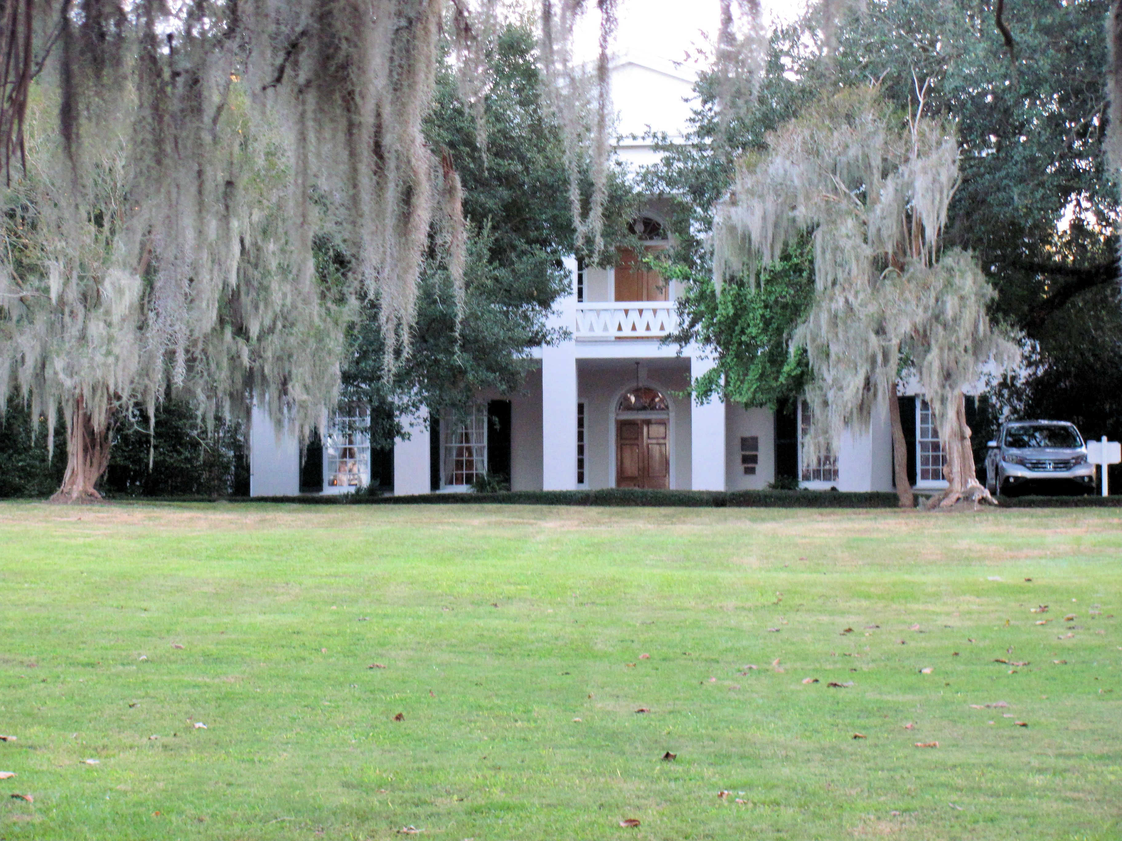 Beautiful Oak Trees Draped With Spanish Moss In Front Of The