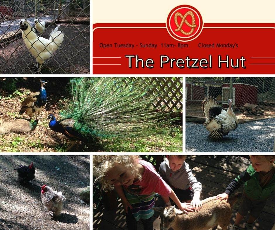 The Pretzel Hut FREE petting zoo near Brickerville, PA