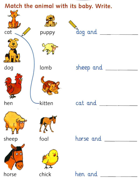 Pictures Baby Animal Names Worksheet - Studioxcess