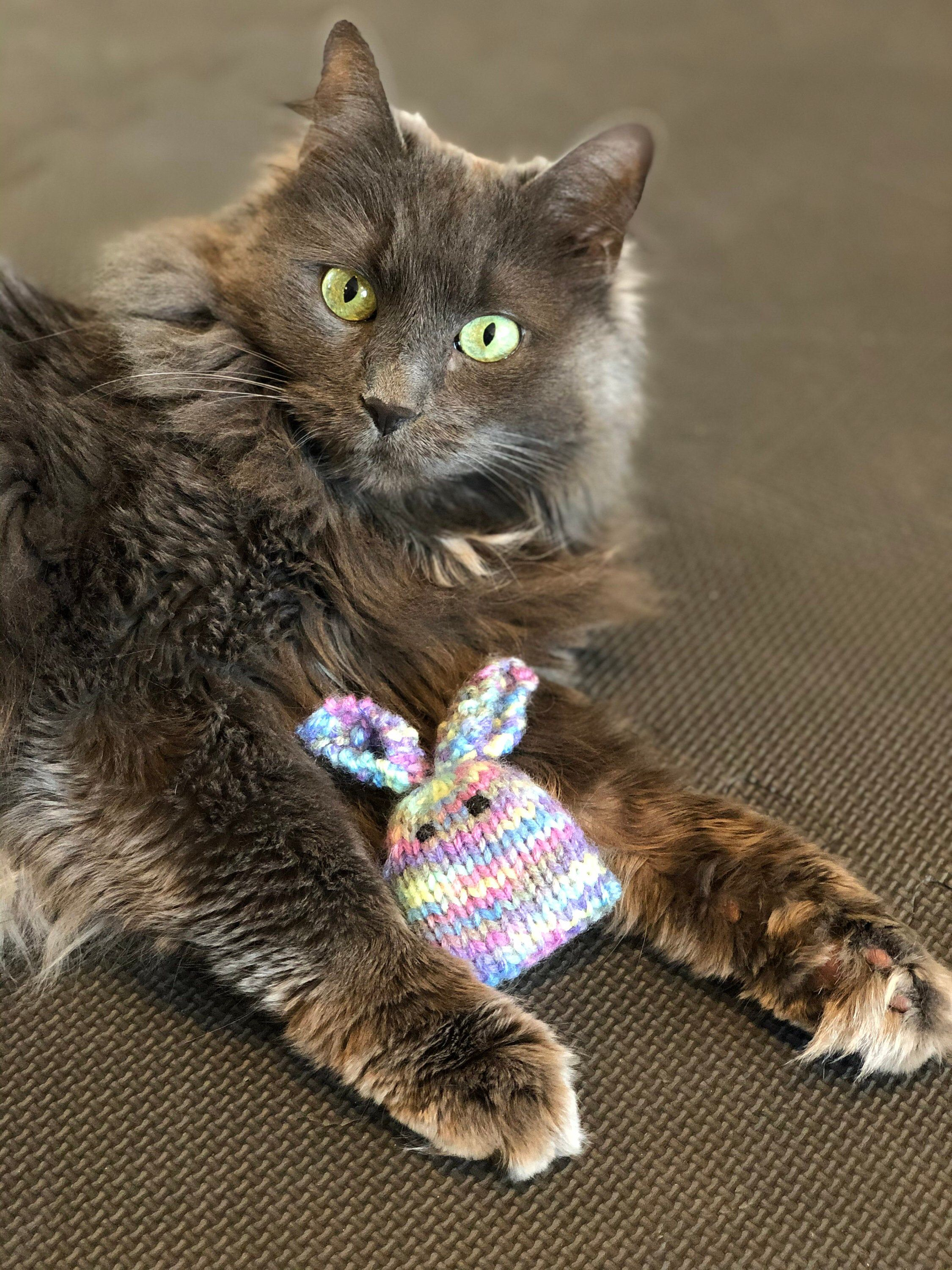Cat Toy Catnip Toy Knit Cat Toy Knit Bunny Cat Toy Knit Bunny Catnip Cat Toy Cat Kitty Kitty Cat Hand Knit Cat Toy Pet Toy Catnip Cat Toys Pet Toys