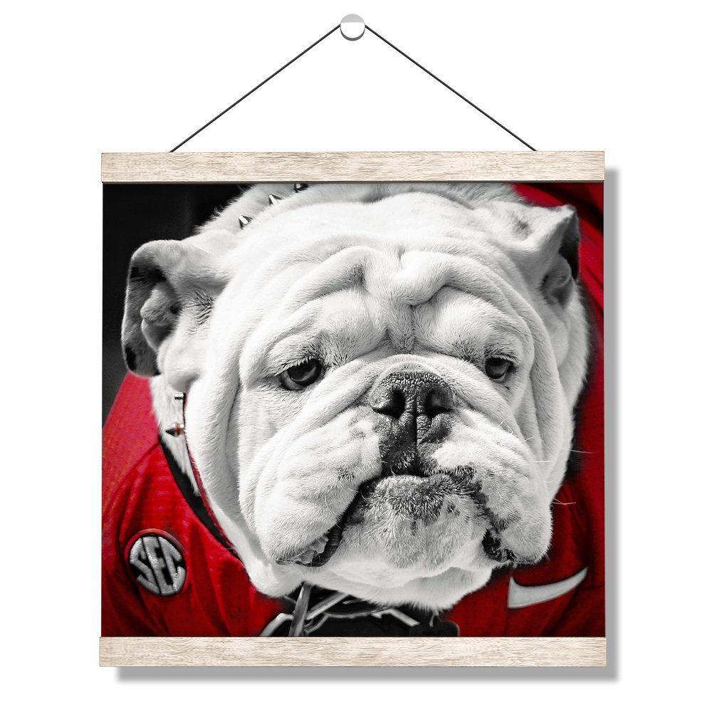 Pin On Georgia Bulldogs Wall Art