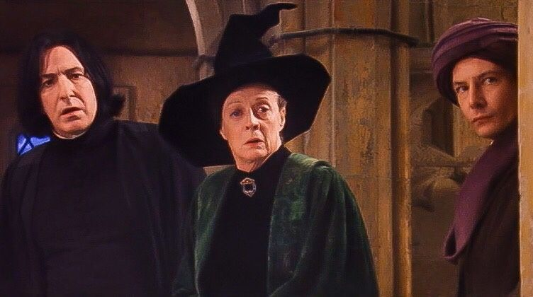 Harry Potter And The Sorcerer S Stone Snape Mcgonagall And Quirrell Harry Potter Harry Potter Characters Harry Potter Fantastic Beasts