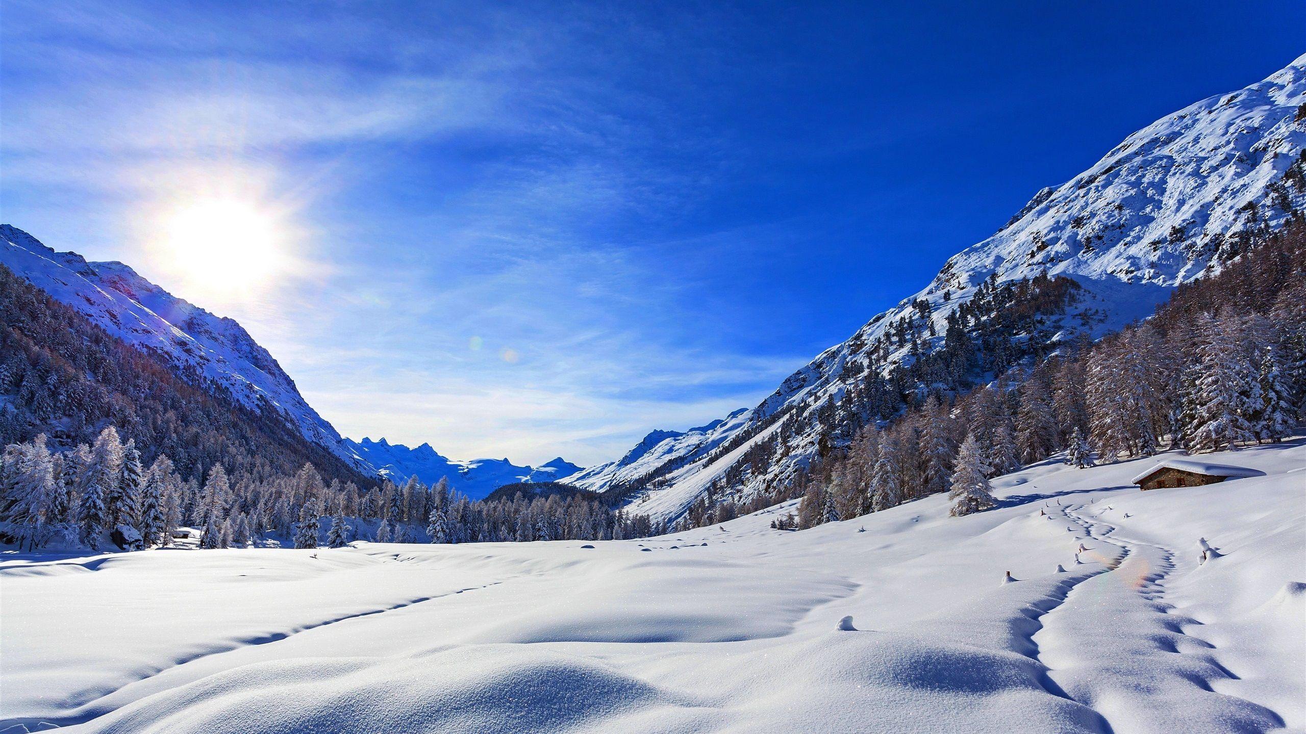 Montagnes Hiver Neige Ciel Bleu Les Arbres Le Soleil