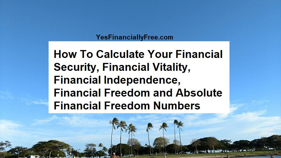 How To Calculate Your Financial Security Financial Vitality Financial Independence Financial Freedom And Financial Independence Financial Freedom Financial