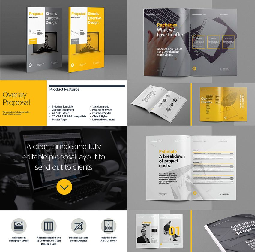 Overlay Business Proposal Template Designs  Identity