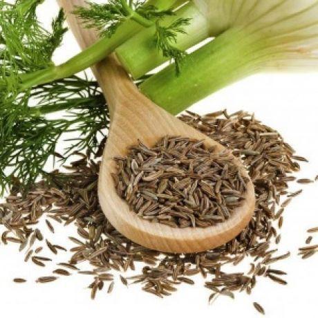 Семена укропа: лечебные свойства и противопоказания, от ...