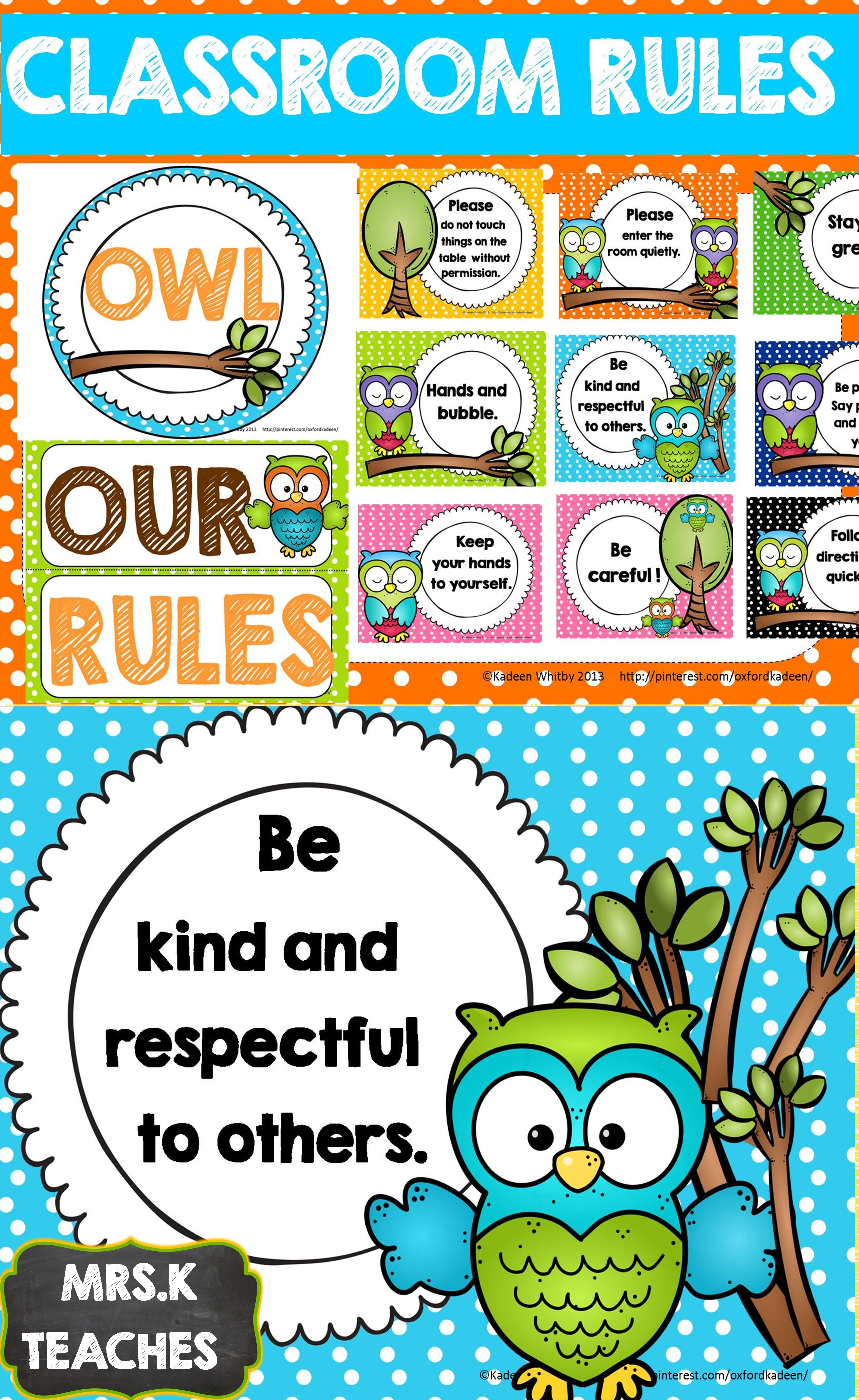 Owl Themed Classroom Rule Posters Editable
