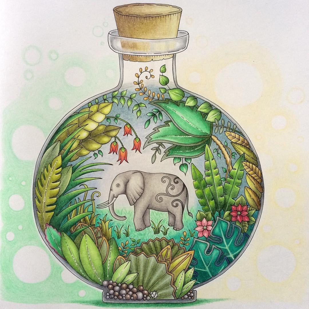book magical jungle by johanna basford medium prismacolor