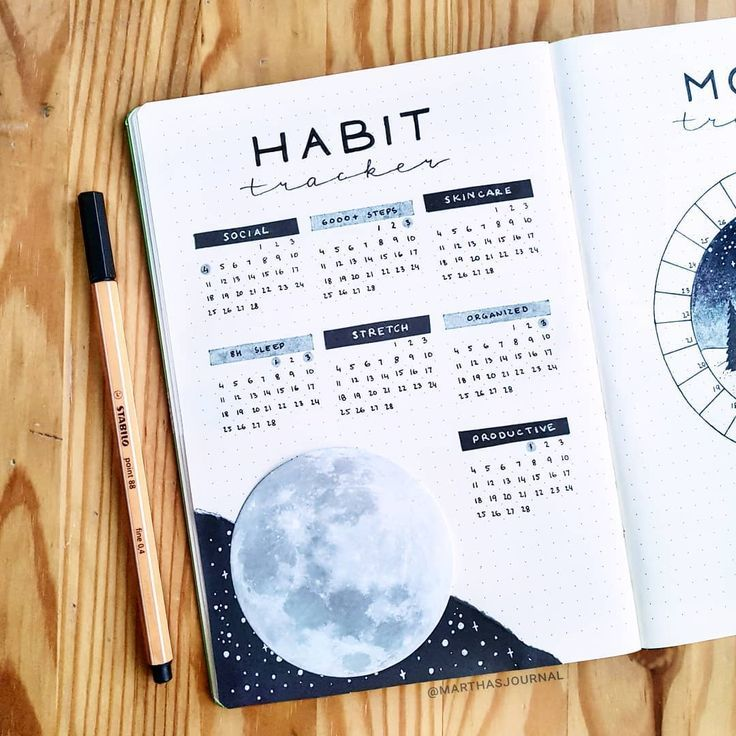 Martha  on Instagram Habit tracker for February and a tiny sneak peek of my mood tracker   Also I messed up a drawing and tried to cover it with this moon