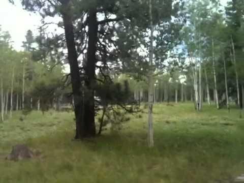 Winn Campground, AZ 08/24/2011