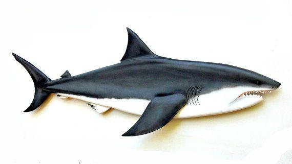 GREAT WHITE SHARK 36\'\' wood carving, shark decor, shark wall decor ...