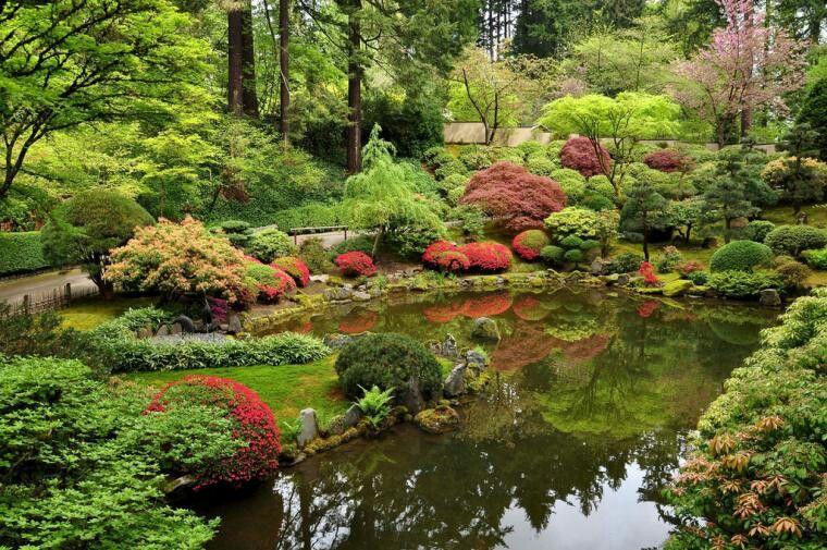 Flores en el agua Portland japanese garden, Japanese