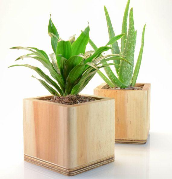 Wood Planter Indoor Planter Succulent Planter Reclaimed Wood Ceramic Planter Wood Home Decor Cactus Planter Rustic Planter