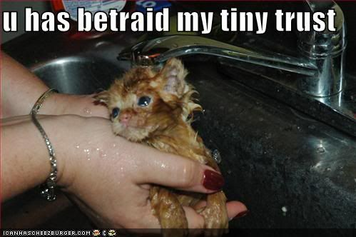 u has betraid my tiny trust.