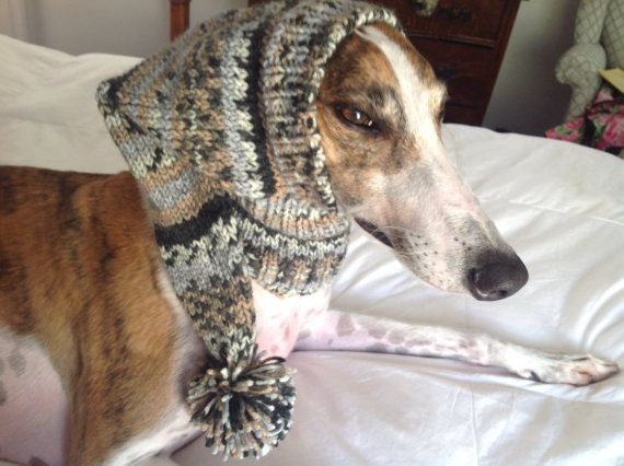 Pointed Hat with Snood for Greyhound --fair isle pattern Taupe ...
