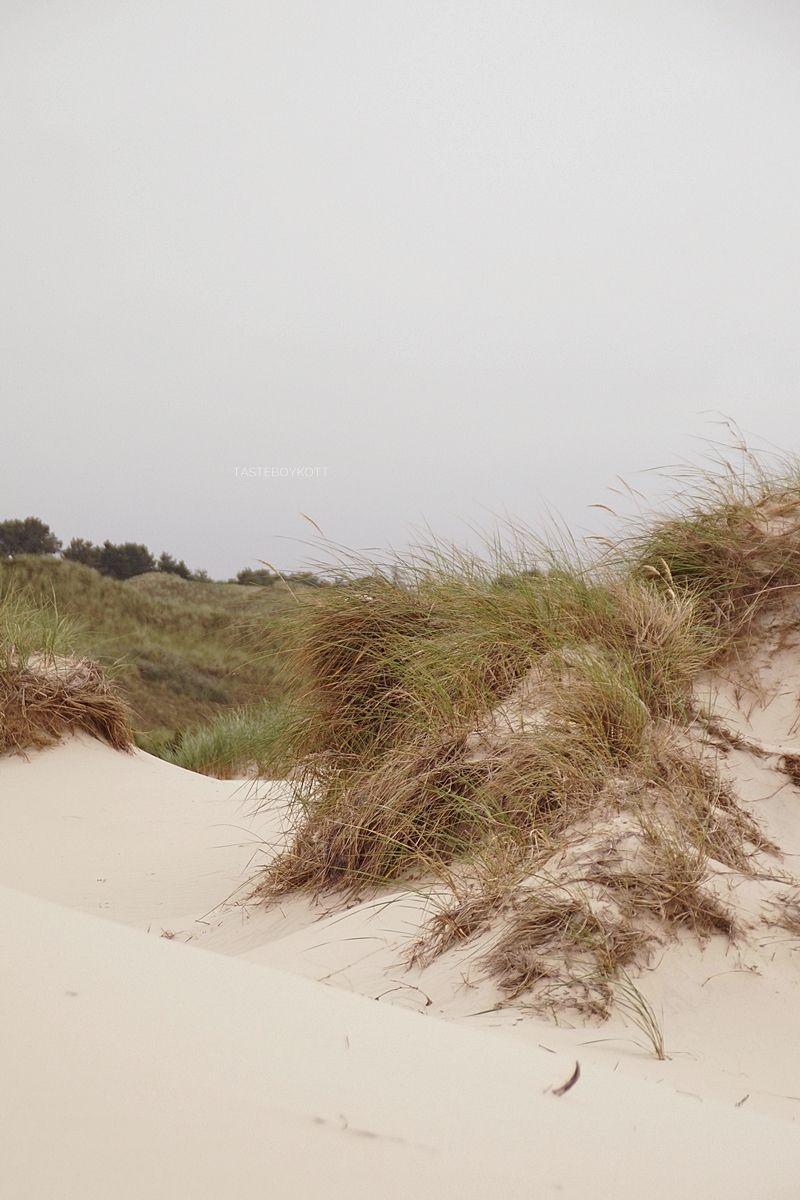 Amrum 2 Boardwalks View Dune Beach Norddorf Amrum Beach