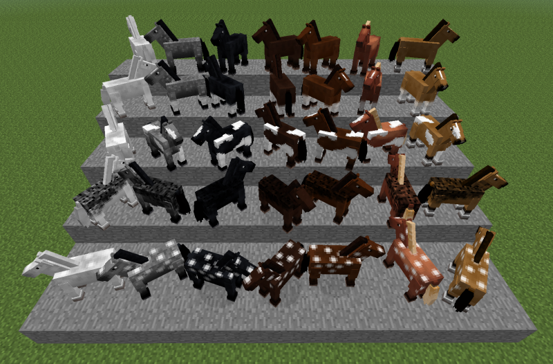 The 35 different types of Minecraft horses! Courtesy of