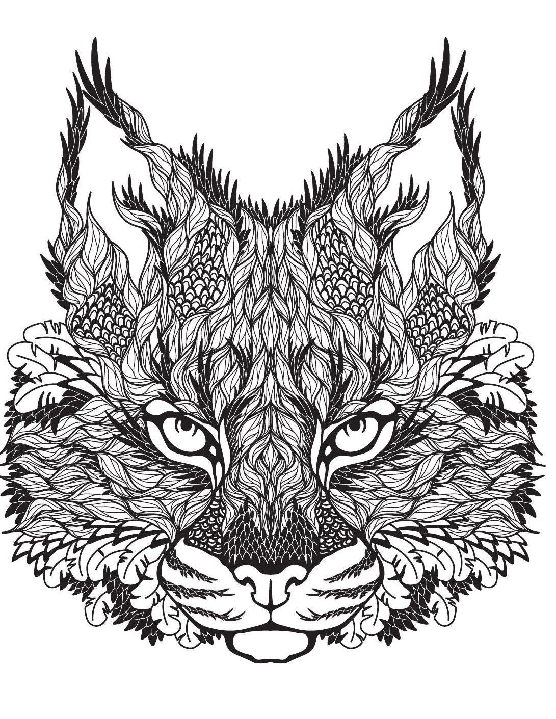 Terapia Da Cor Nº3 Animal Coloring Pages Lion Coloring Pages Cat Coloring Page