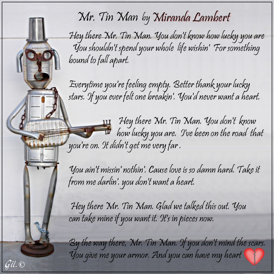 Mr Tin Man By Miranda Lambert With Images Country Music