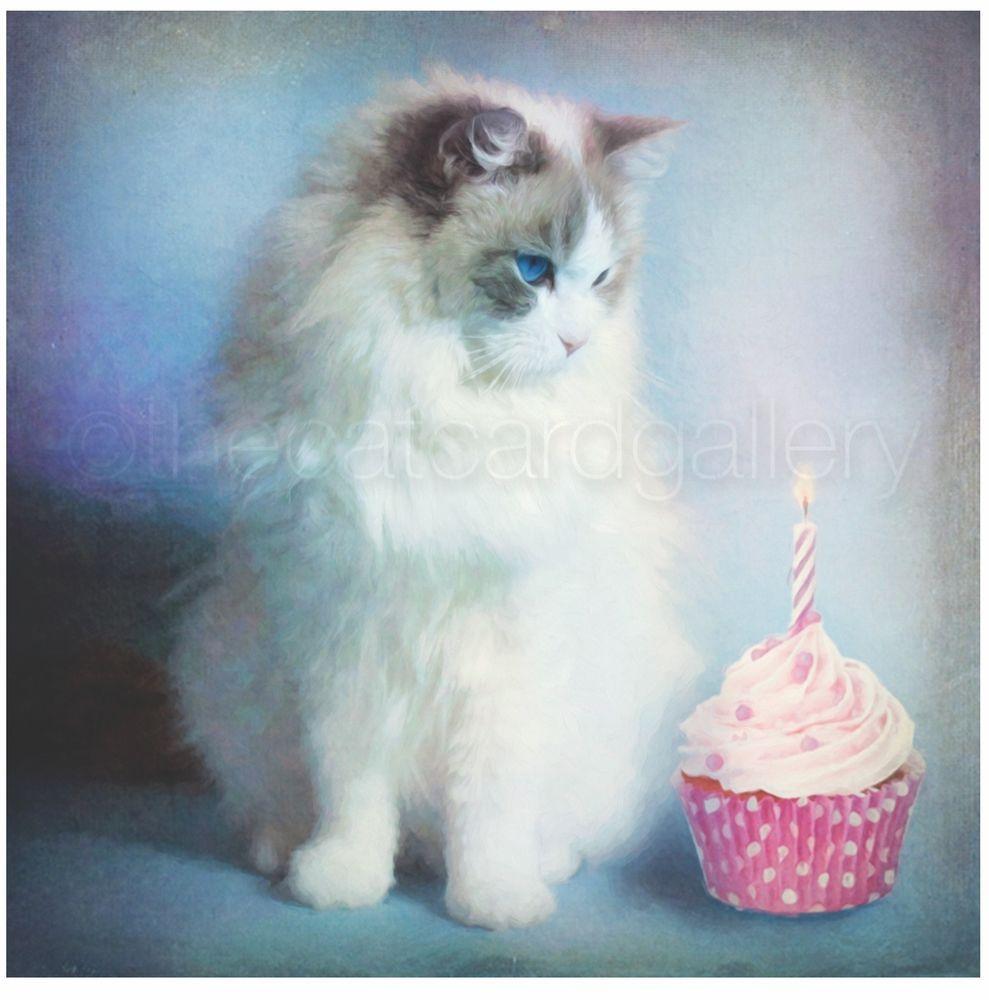 Birthday Cards Ragdoll Cat Lover Mum Sister Niece Nan Gran Friend