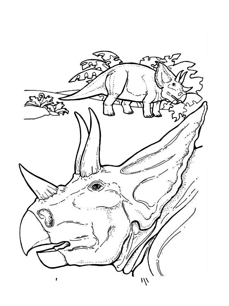 Free Printable Triceratops Coloring Pages For Kids Coloring