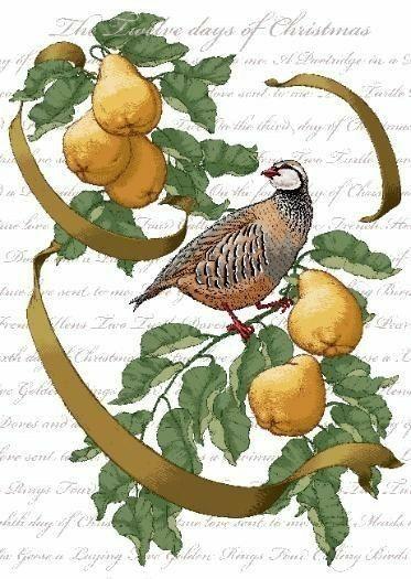 Image by Karen Allen on A Partridge in a Pear Tree ~   Christmas ephemera, Twelve days of ...