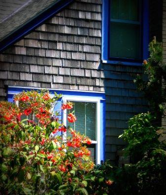 Best Love The Coastal Shingle Siding Want It In Dark Blue 400 x 300