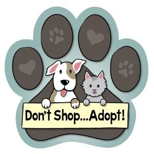 Animals Ink Large Paw Car Magnet Don T Shop Adopt Adoption Cute Puppy Pictures Dog Adoption