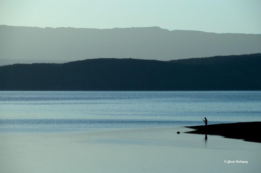 https://flic.kr/p/Q5zUk2 | Pescador - Fisherman | Embalse Argentina