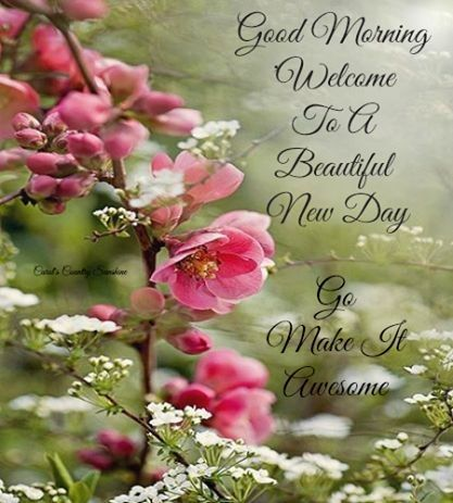 Good Morning and Welcome to A Beautiful Day - My Fav Life Quotes