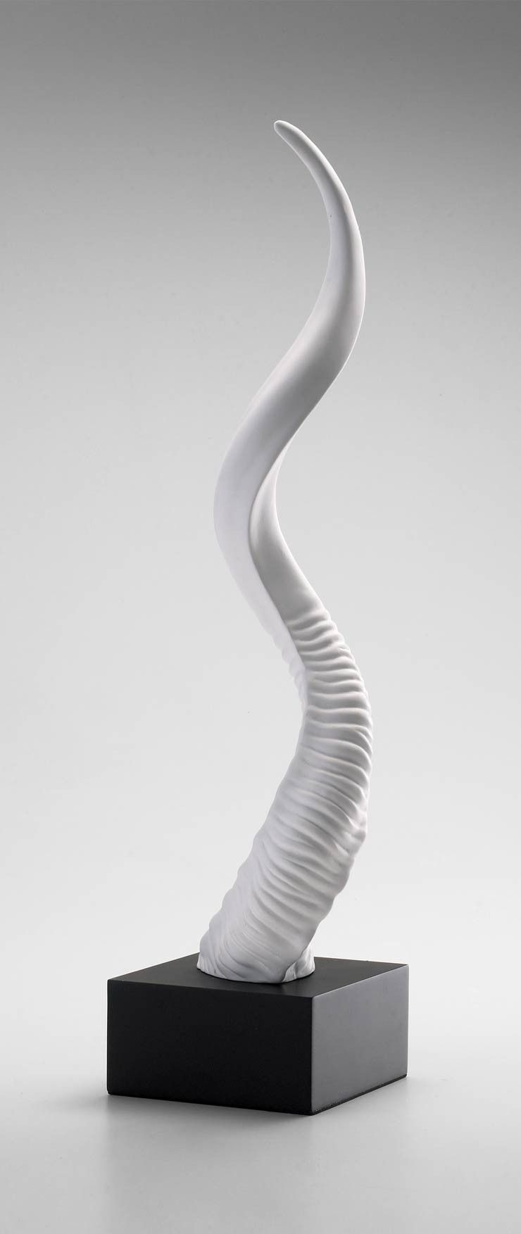 Beast Horn Plaster Sculpture on Wood Base