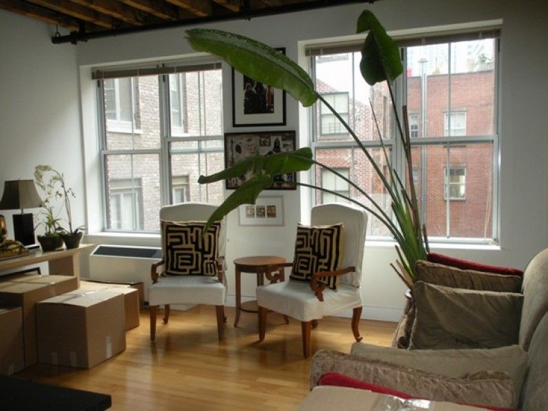 36 Peck Slip Financial District Nyc Rent 5 500 Financial District Quick Vacations House