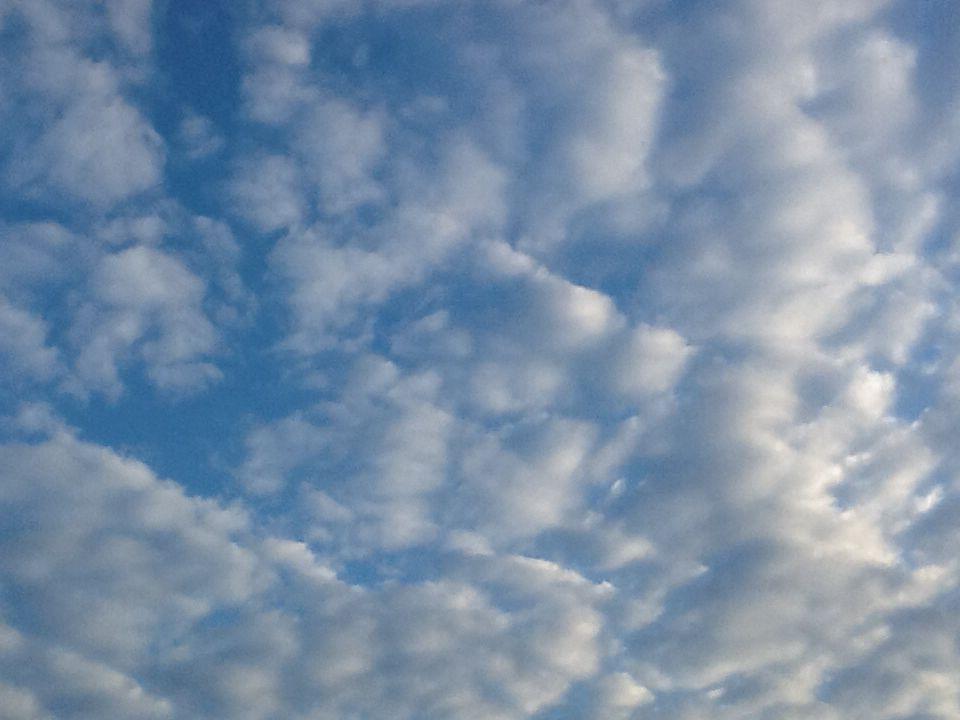 Sint MartensLeerne ochtend 03.10.14