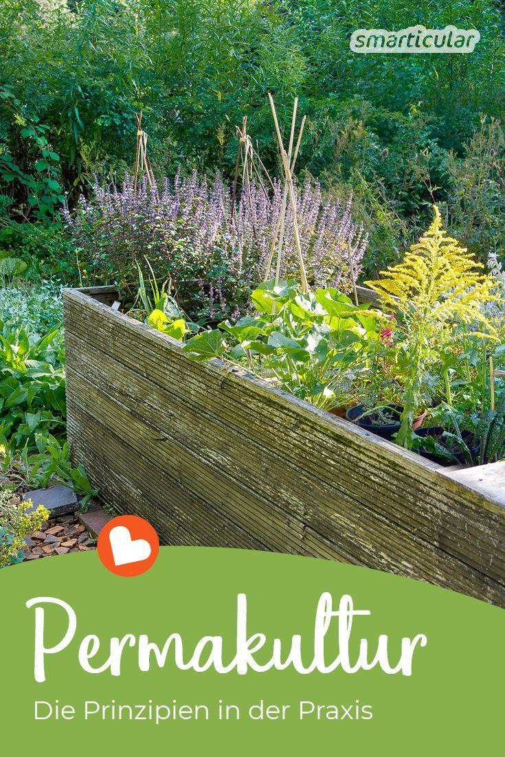 Permakultur Prinzipien Im Eigenen Garten Praktisch Umsetzen Permakultur Permakulturgarten Biogarten