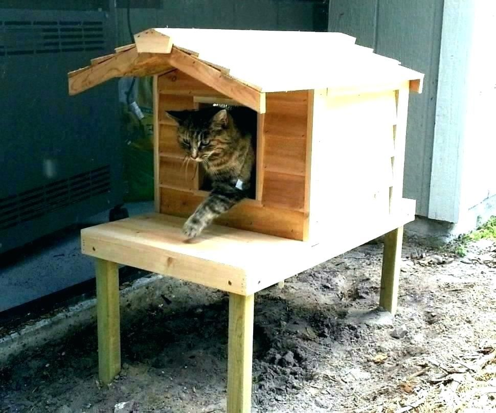 How To Build An Outdoor Cat House S Insulated Outdoor Cat House Plans Shelter Making A Heated Outdoor C Outdoor Cat House Outdoor Cat House Diy Feral Cat House
