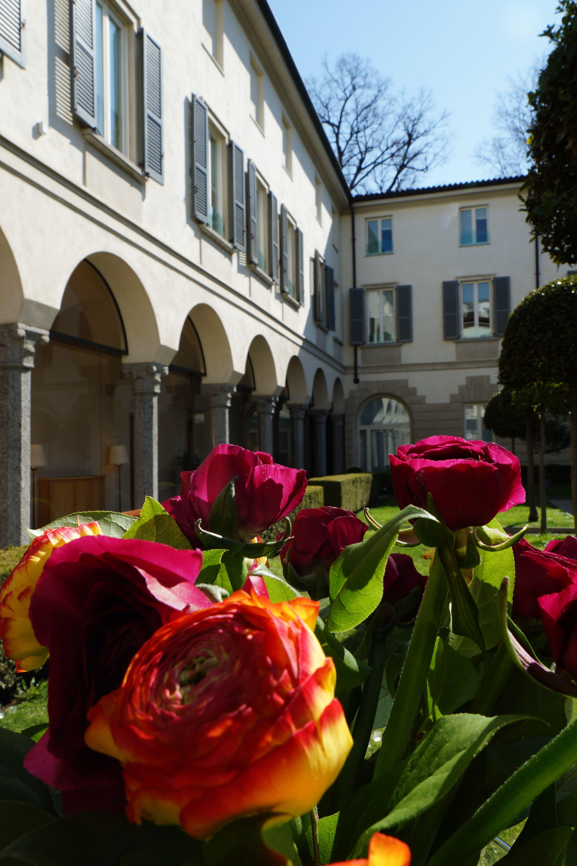 The beautiful courtyard...