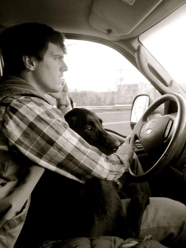 'Let meeee... drive Dad!'