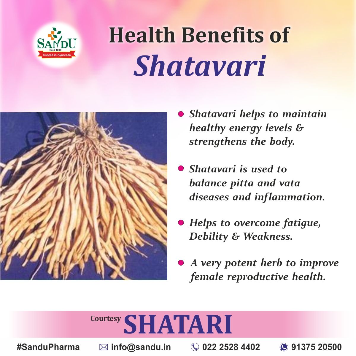 Health Benefits of Shatavari in 2020 | Health, Healthy