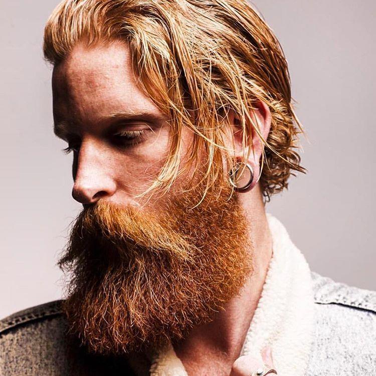 шотландская борода фото зависит количества свободного