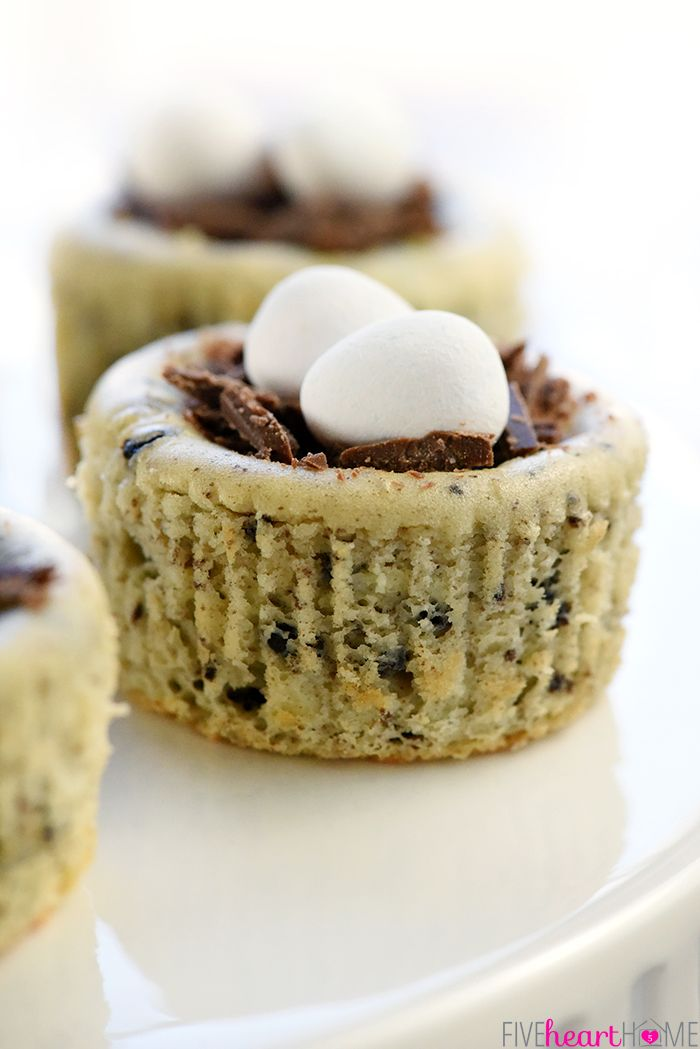 Bird S Nest Mini Oreo Cheesecakes Easter Dessert Recipe Simple Cheesecake Filling Is Studded With Oreos Baked In Pans And Topped Chocolate