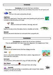 worksheet: Vertebrates And Invertebrates Worksheets For Kids ...