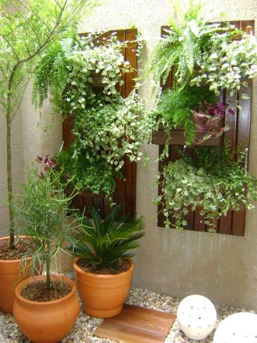 Fotos de decoração, design de interiores e reformas Estilo rural - plantas para jardin