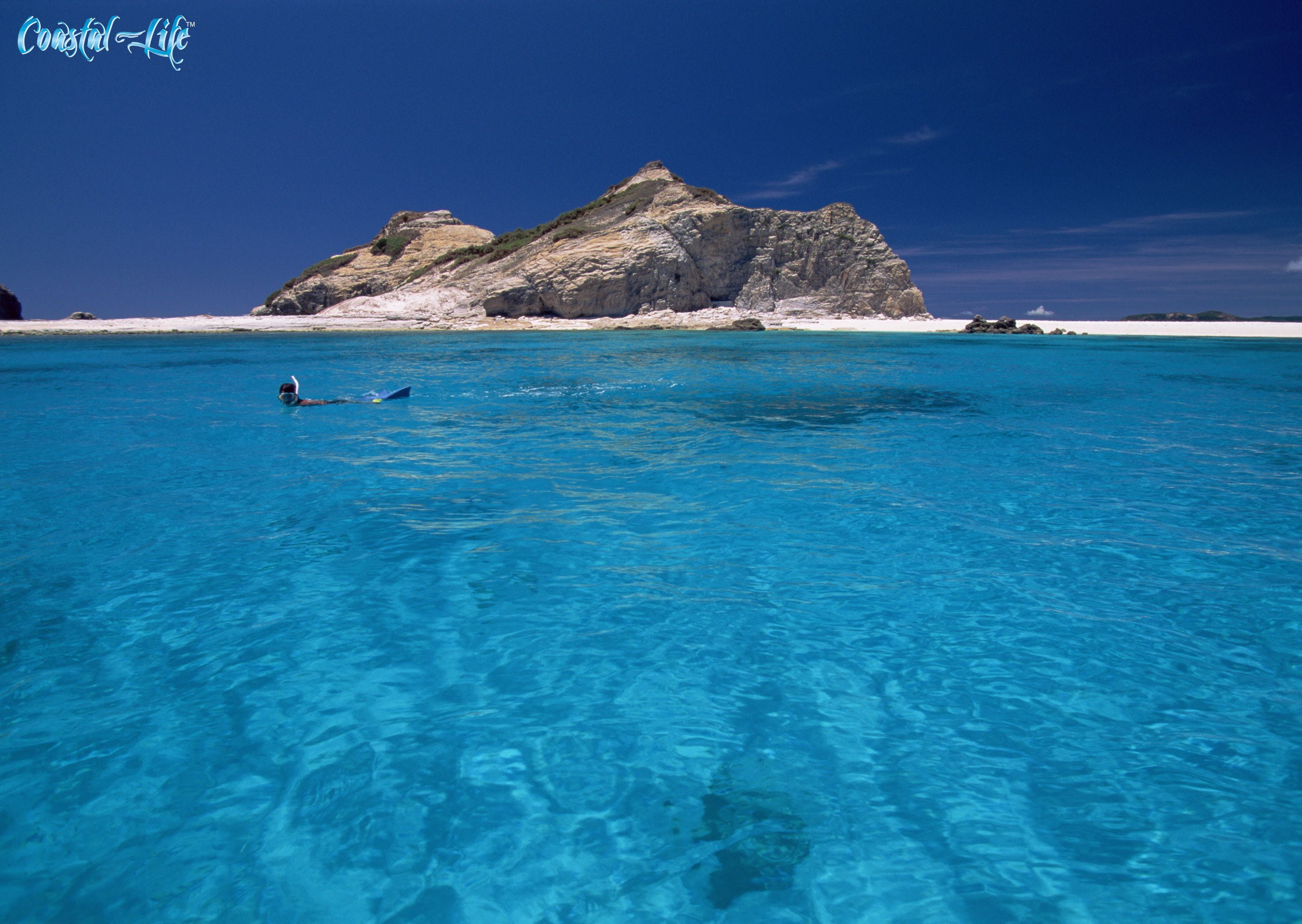 Start the week off with a snorkel!