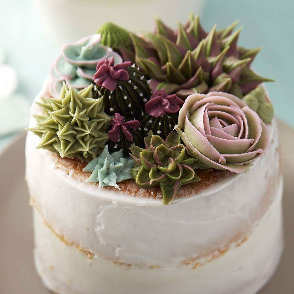 Succulent Decorated Cake