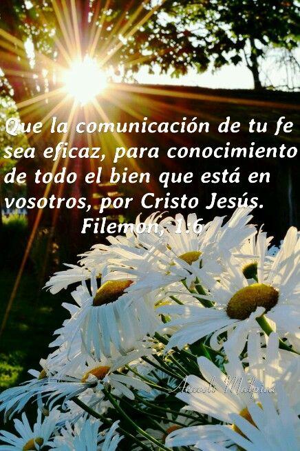 Filemón, 1:6 - que la comunicación de tu fe sea eficaz, para conocimiento de todo el bien que está en vosotros, por Cristo Jesús.LAS COMUNICACIONES ORDINARIAS DE LA VIDA TAMBIEN ILUSTRAN  LA FE DE VARIOS MODOS   Filemón, 1:6 - que la comunicación de tu FE sea eficaz, para conocimiento de todo el bien que está en vosotros, por Cristo Jesús.   El agricultor deposita su semilla en la tierra confiando en que no solo viva sino que se multiplique. Tiene FE en el arreglo del pacto de que la…