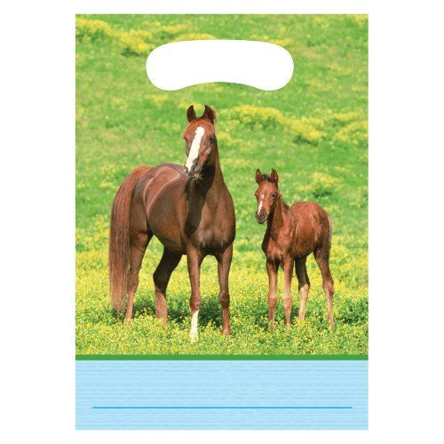 Wild Horses Party Bags