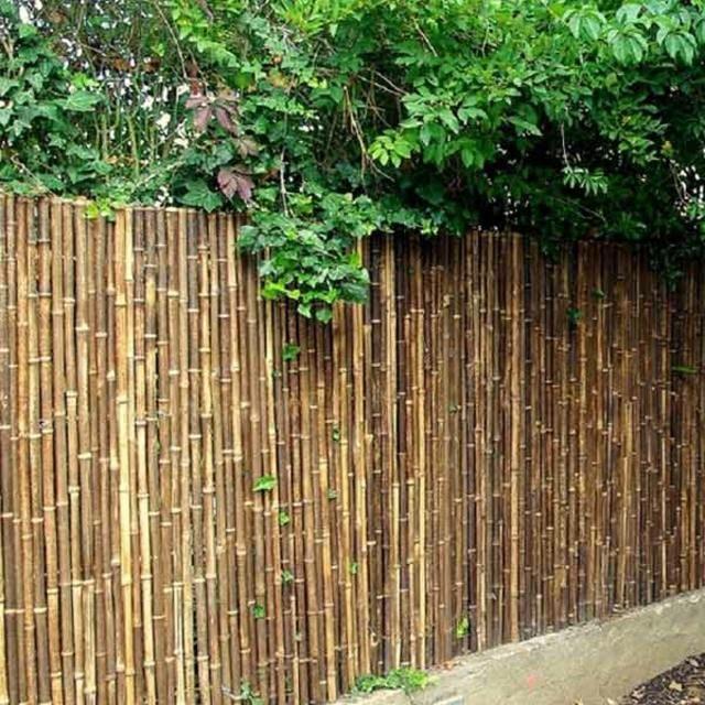 cl ture de jardin il y en a pour tous les go ts cl ture en bambou bambou et cl tures de jardin. Black Bedroom Furniture Sets. Home Design Ideas